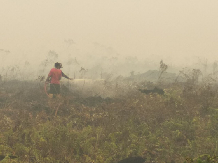 Police name 249 suspects in forest fires