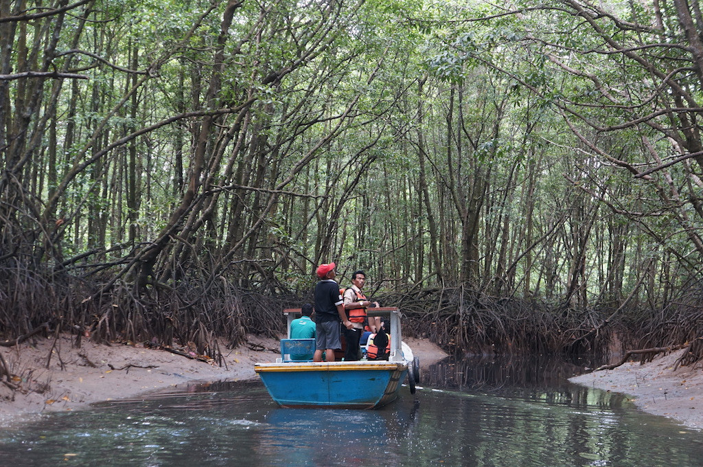 The beginning of a cruise along the Somber River from the Graha Indah mangrove center in Balikpapan, East Kalimantan.