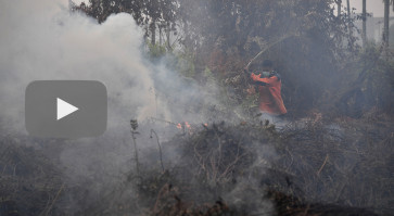 Indonesia forest fires surge, air quality worsens as smog blankets provinces