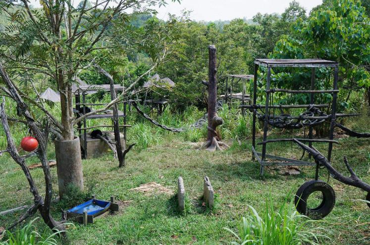 The sun bear playground at Samboja Lestari center in Kutai Kartanegara regency, East Kalimantan