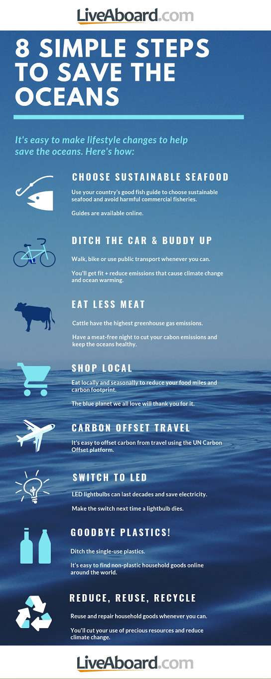 8 simple steps you can take to save the oceans