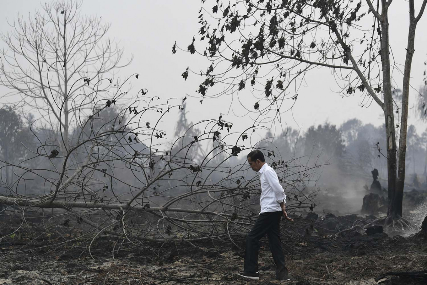 Tourism in crisis: Forest fires cause foreigners to cancel trips