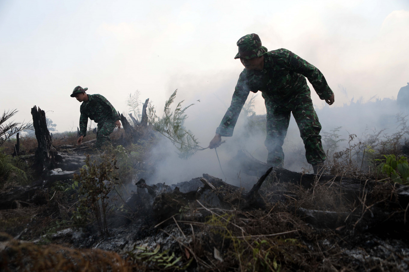 Adverse effects: In 2015, Indonesia experienced massive and severe fires for most of the year. The World Bank reported in February 2016 that at least 2.6 million hectares of land (mostly peatland) had caught fire that year in just five months, from June to October. The economic value of losses was estimated to be US$16.1 billion.