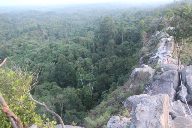 'What about Kalimantan's mighty forests?' Capital city plan raises questions about environment