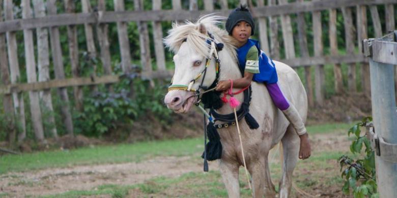Activists condemn horse racing for children in West Nusa Tenggara after young jockey's death