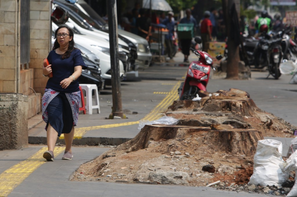 Stop cutting down trees, City Council speaker tells Jakarta administration