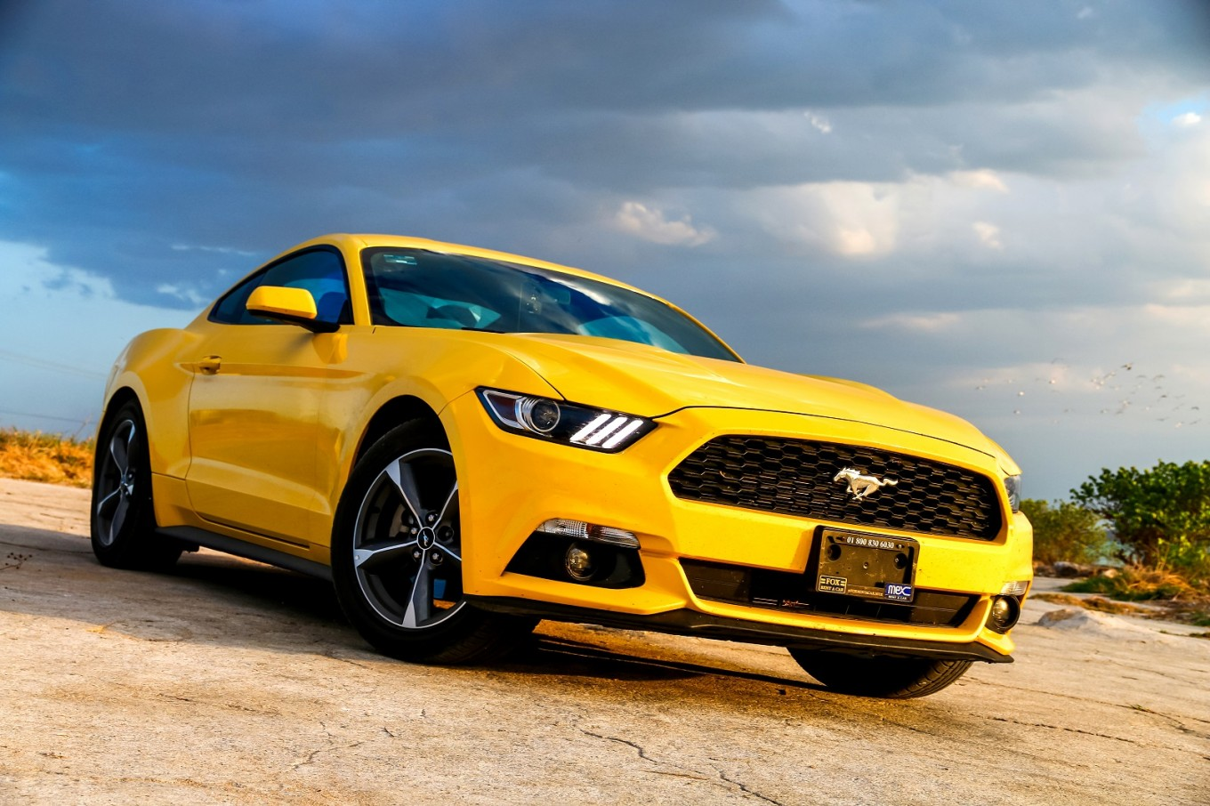 Ford unveils electric Mustang SUV to challenge Tesla dominance