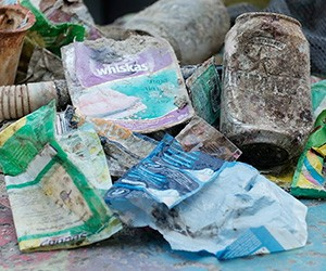 Underwater waste brand audit to identify top corporate plastic polluters