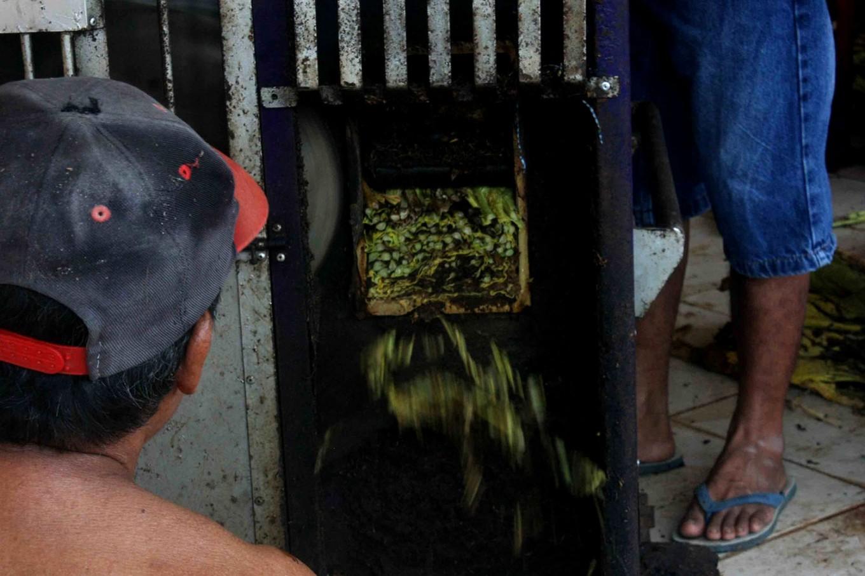 A machine used to cut tobacco leaves. JP/Maksum Nur Fauzan