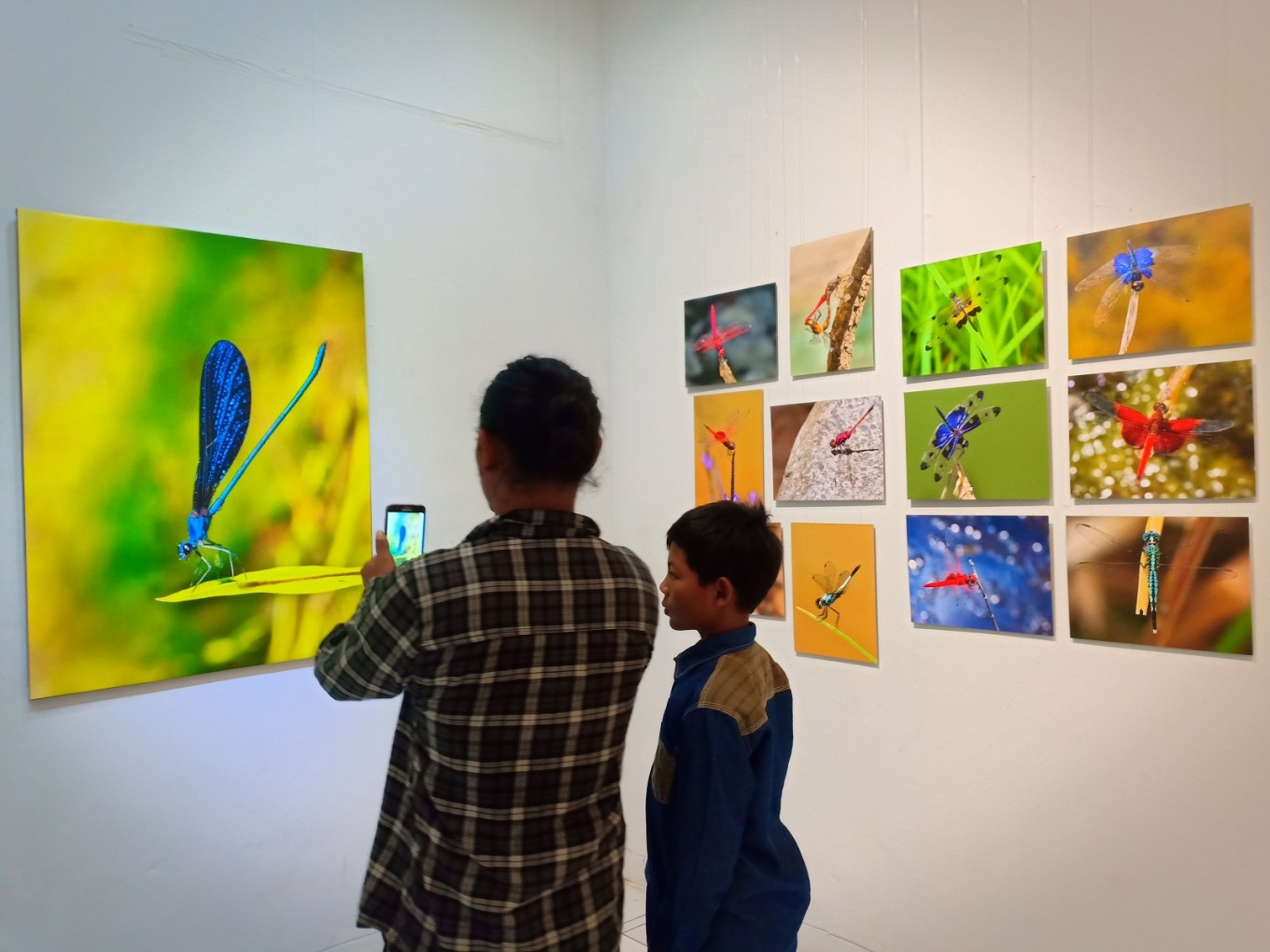 Enter the dragonfly: Wahyu Sigit Rahadi blends art, science in Yogya exhibit