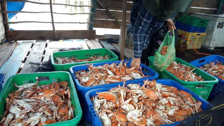 The catch of the day for Sungsang village's fishermen.