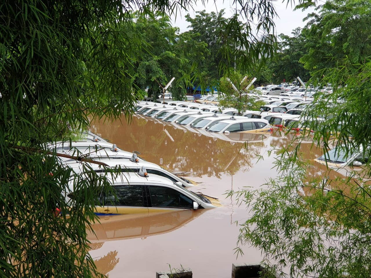 Cars are seen partially submerged in water at the Express taxi pool in Tanah Kusir, South Jakarta, on Jan. 1. JP/R Berto Wedhatama