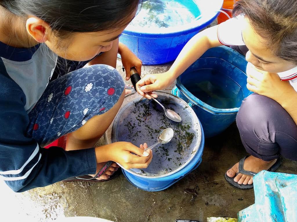Two teenagers sort thousands of 1-week-old koi fish seeds in Kemloko village, Blitar, East Java, on Jan. 8, 2020.