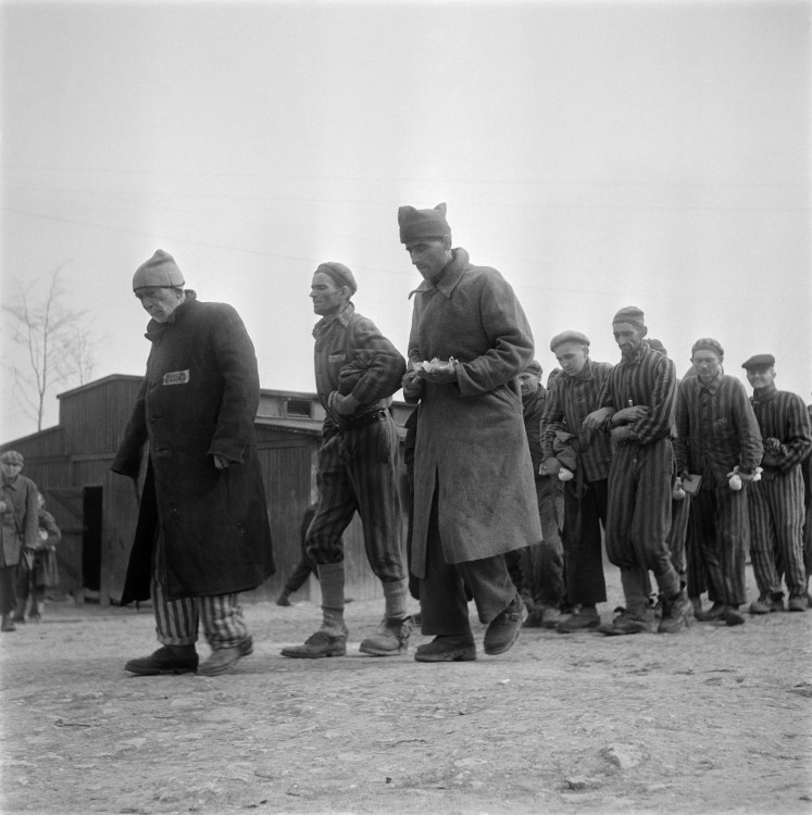 Weak and ill survivors of the Nazi concentration camp in Buchenwald march April 1945 towards the infirmary, after the liberation of the camp by Allied troops. The construction of Buchenwald camp started 15 July 1937 and was liberated by US General Patton's army 11 April 1945. Between 239,000 and 250,000 people were imprisoned in this camp. About 56,000 died among which 11,000 Jews. On the 4th of April Patton's army liberated the Buchenwald sub-camp in Ohrdruf, where they only found about fifty corpses of prisonners. The 9000 Buchenwald commandos - hundreds of Polish, Russian, Yugoslavian, Italian and French, some Hungarian and Russian Jews, and gypsies - had been forced by the Nazis to march 80 km on April 2nd from Ohrdruf to the main camp Buchenwald. Most of them were evacuated again April the 7th to Dachau and Flossenburg. Much died during this ordeal. On the 11th of April the International Committee (created in August 194Dépo3 by the prisoners), who managed to obtain and hide arms during previous shelling, gave the order for an insurrection which pave the way for the US army.