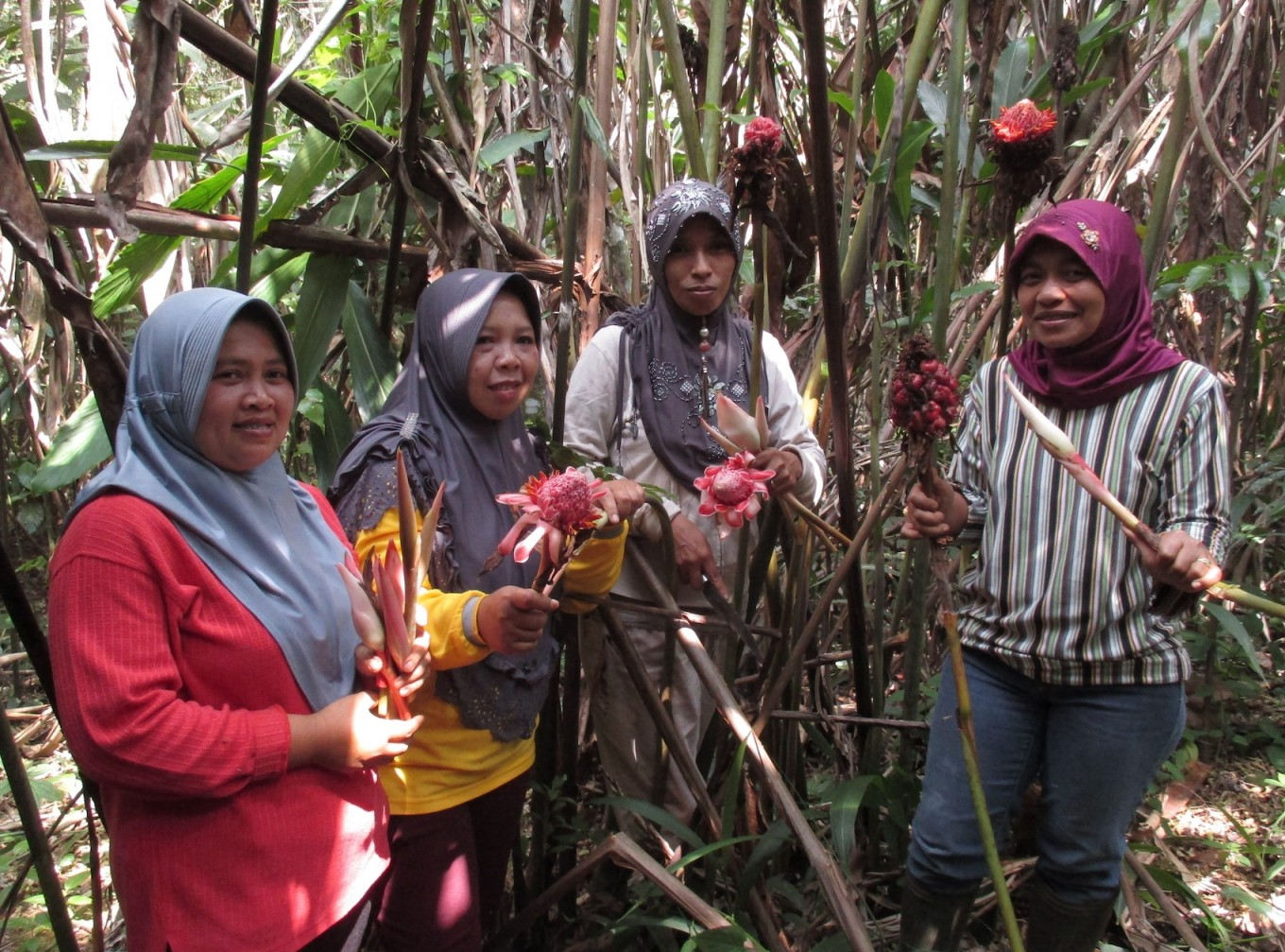 Women in Sumatra help preserve World Heritage forest to build food security