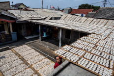 Hundreds of crackers are dried in the sun. JP/Afriadi Hikmal