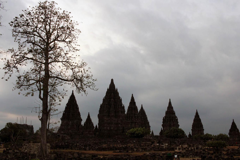 Yogyakarta travel agencies eye small groups of travelers to boost business
