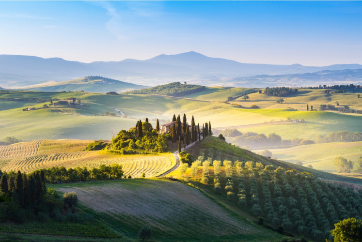 Relishing the rolling hills of Val D'orcia in Tuscany