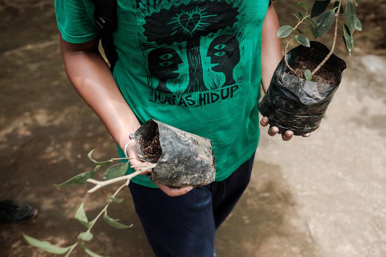 Sanjaya, a volunteer, carries banyan plants. JP/Anggara Mahendra
