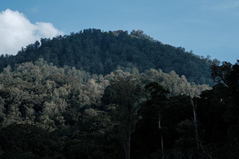 Lesung Hill at Tamblingan Lake in Buleleng, Bali. JP/Anggara Mahendra