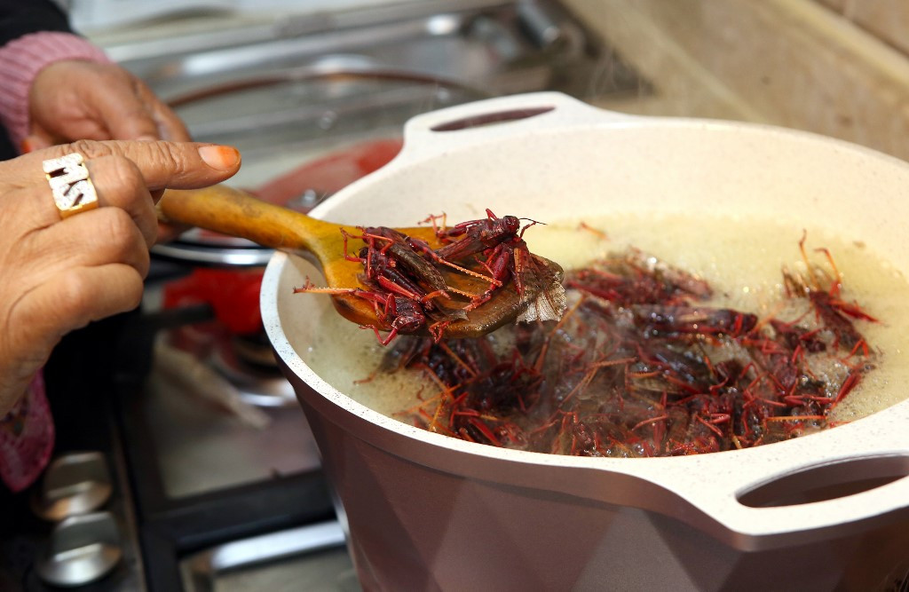 Locusts boiled, baked or dried? Kuwait serves up a swarm