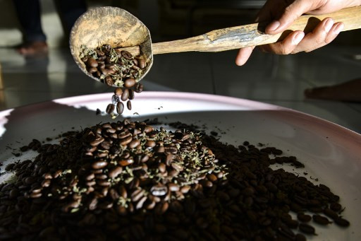 Cannabis coffee: Indonesia's sharia stronghold sidesteps drug ban
