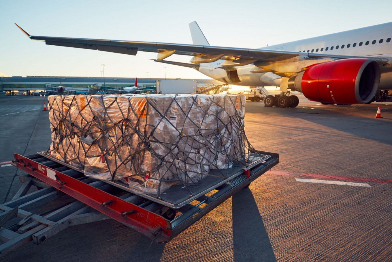 Air cargo industry not yet ready for COVID-19 vaccine distribution: Survey