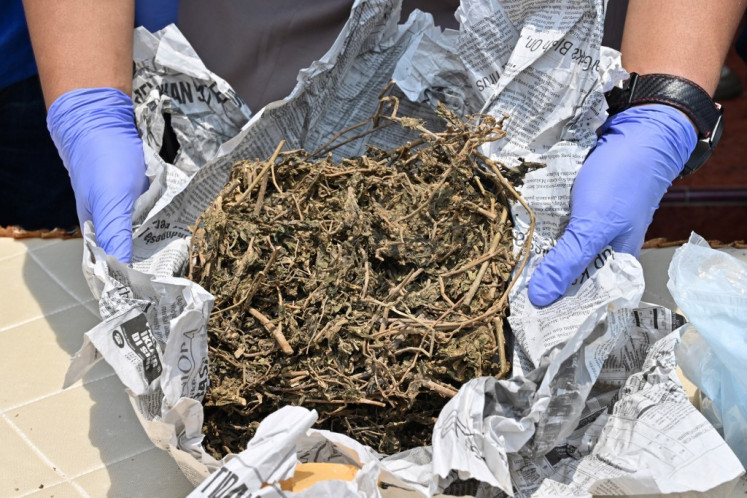 A police officer shows marijuana during a press conference in Jakarta on Nov. 5, 2019. West Jakarta Police precinct destroyed drugs seized during raids over the past three month raids.
