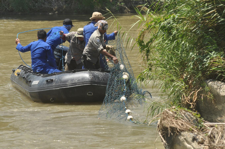 One croc wrangler returns to Australia but rescue efforts, crowdfunding still under way in Palu