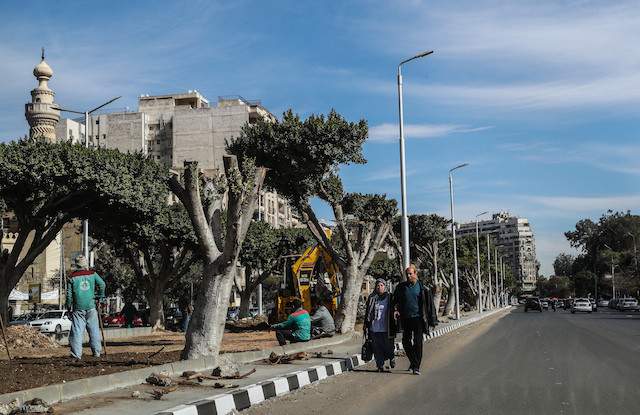 Cairo's green lung razed for roads to new desert capital