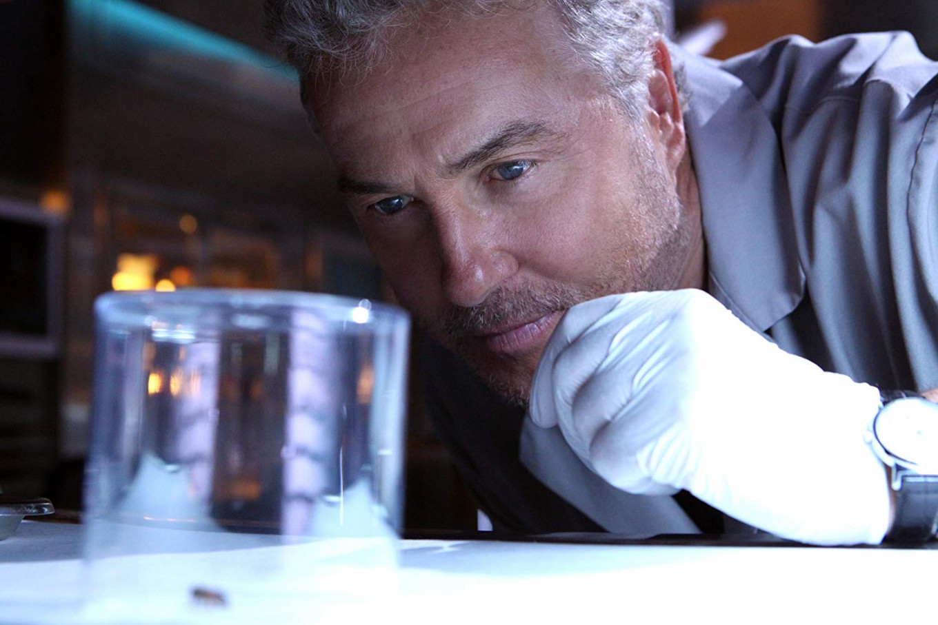 Is the cult series 'CSI: Crime Scene Investigation' coming back to CBS?