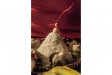 Sesajen, an offering comprising of rice, fruits and coffee, is mandatory in a wayang kulit performance. JP/Irene Barlian
