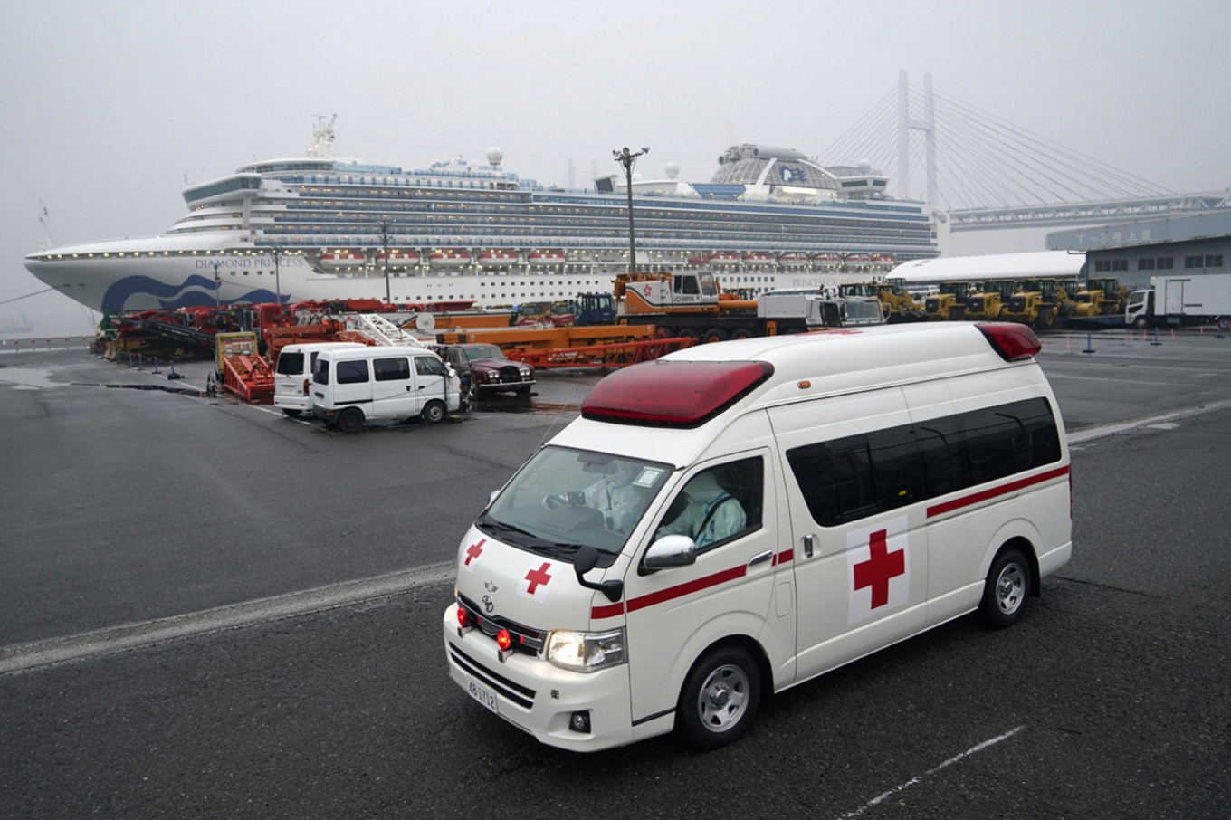 Four Indonesians in Japan recover from COVID-19: Minister