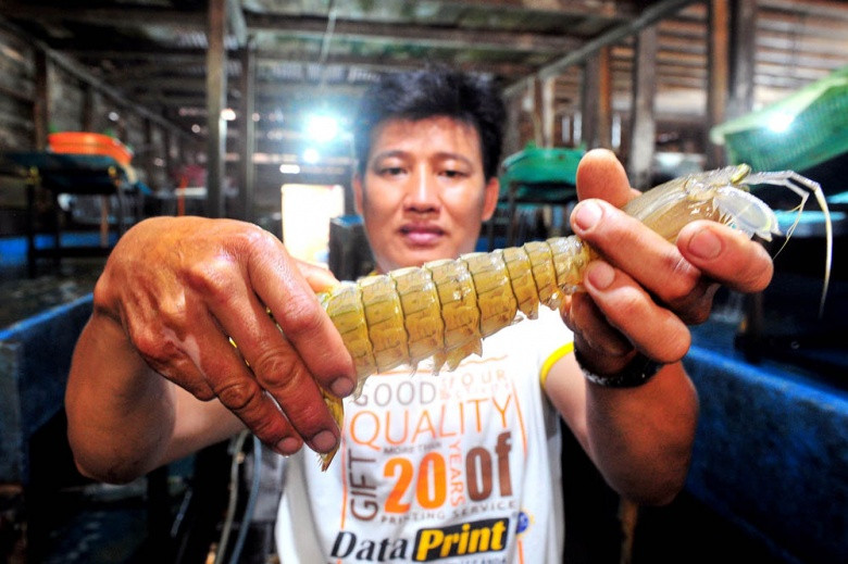 Battered by virus: Businesses across Indonesia feel the pinch