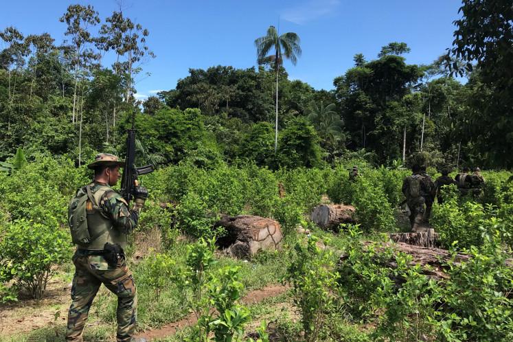 Peruvian anti-narcotics police officers are seen at a coca leaf plantations in Caballococha, Peru November 2, 2019.