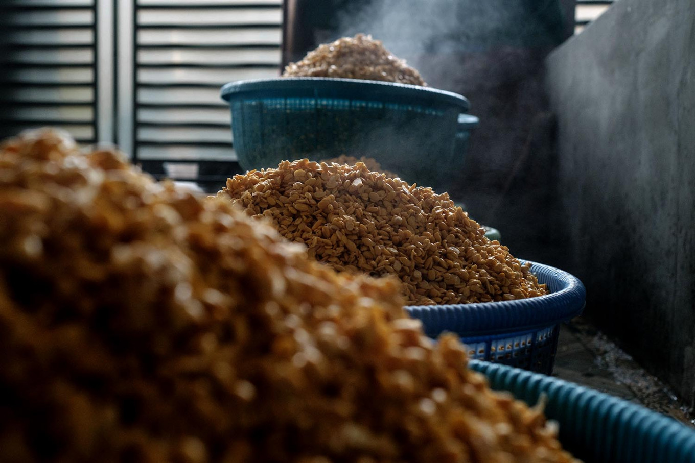 The boiled soybeans are left overnight to reduce their acidity levels. JP/ Anggara Mahendra