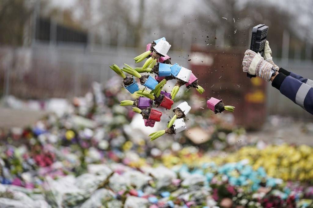 Dutch destroy millions of flowers as coronavirus wilts sales