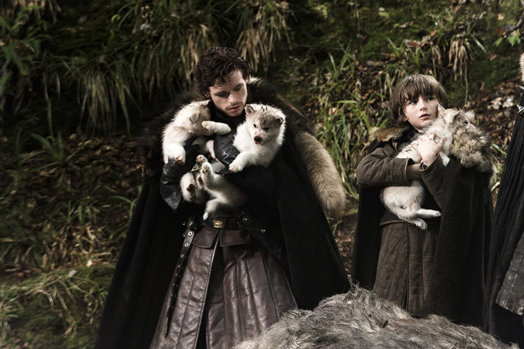 Bran Stark's direwolf on 'Game of Thrones' dies after its battle with cancer