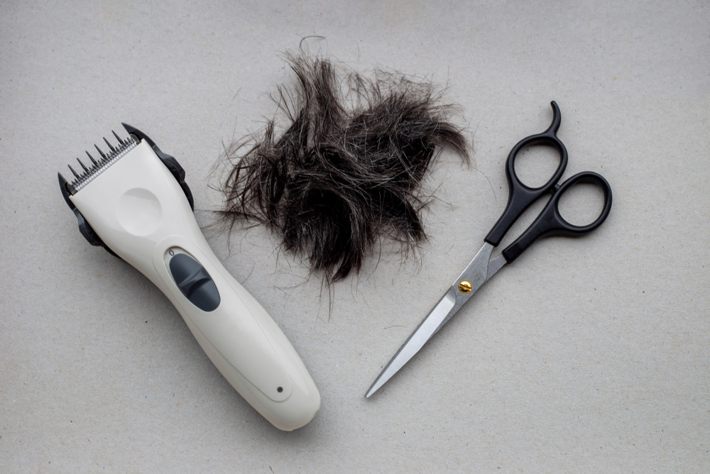 Cutting your hair at home? Clipper brand Wahl has these tips