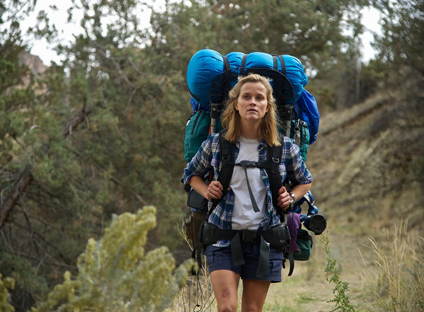 The best travel films for hikers and nature lovers to watch during self-quarantine