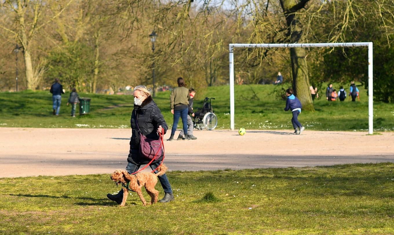 Locked-down Brits seek creature comfort