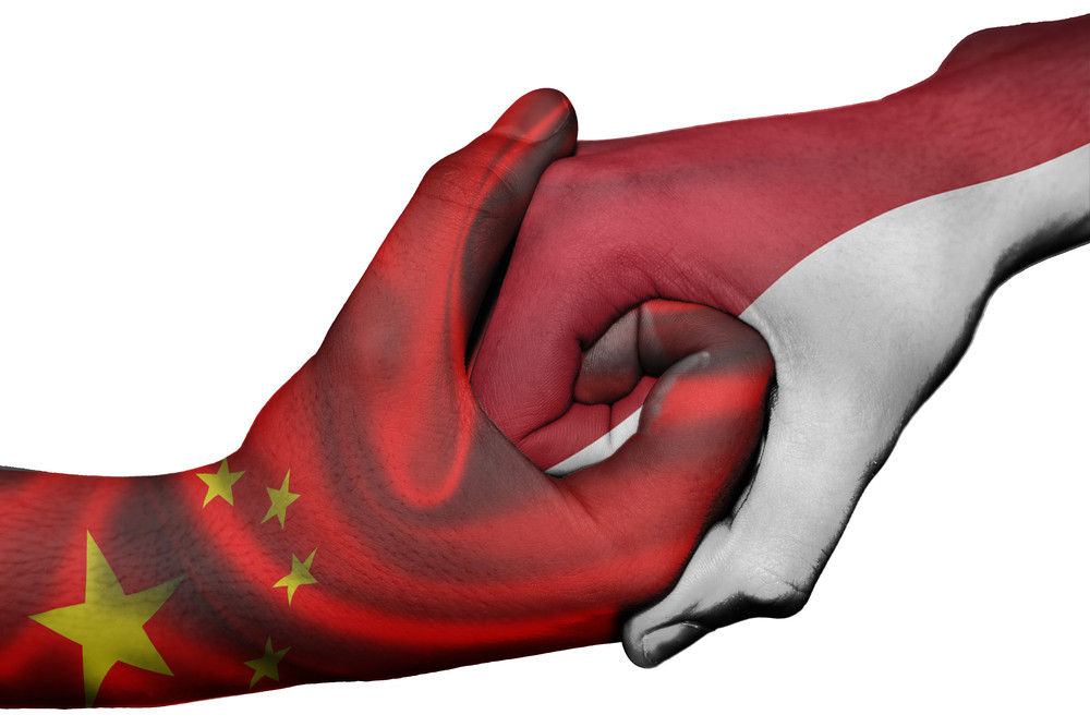 Insight: Work hand-in-hand for a new era of China-Indonesia friendship