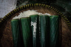 A handful of banana leaf tubes filled with glutinous rice. JP/Anggertimur Lanang Tinarbuko