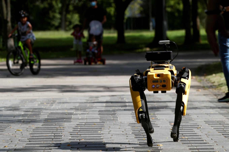 Dog-like robot ensures social distancing in Singapore