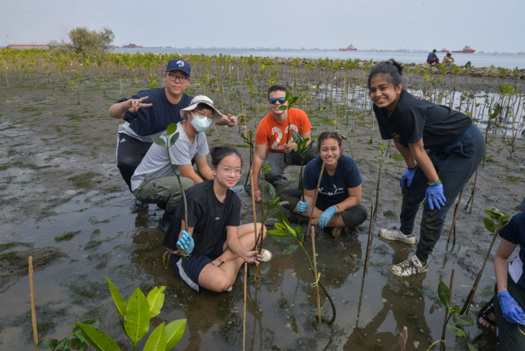 Helping the ecosystem: JIS students learn all about mangroves and their ecosystems, such as how they function, why they're so important for the environment and how they're related to the marine issues of Jakarta's coastline.
