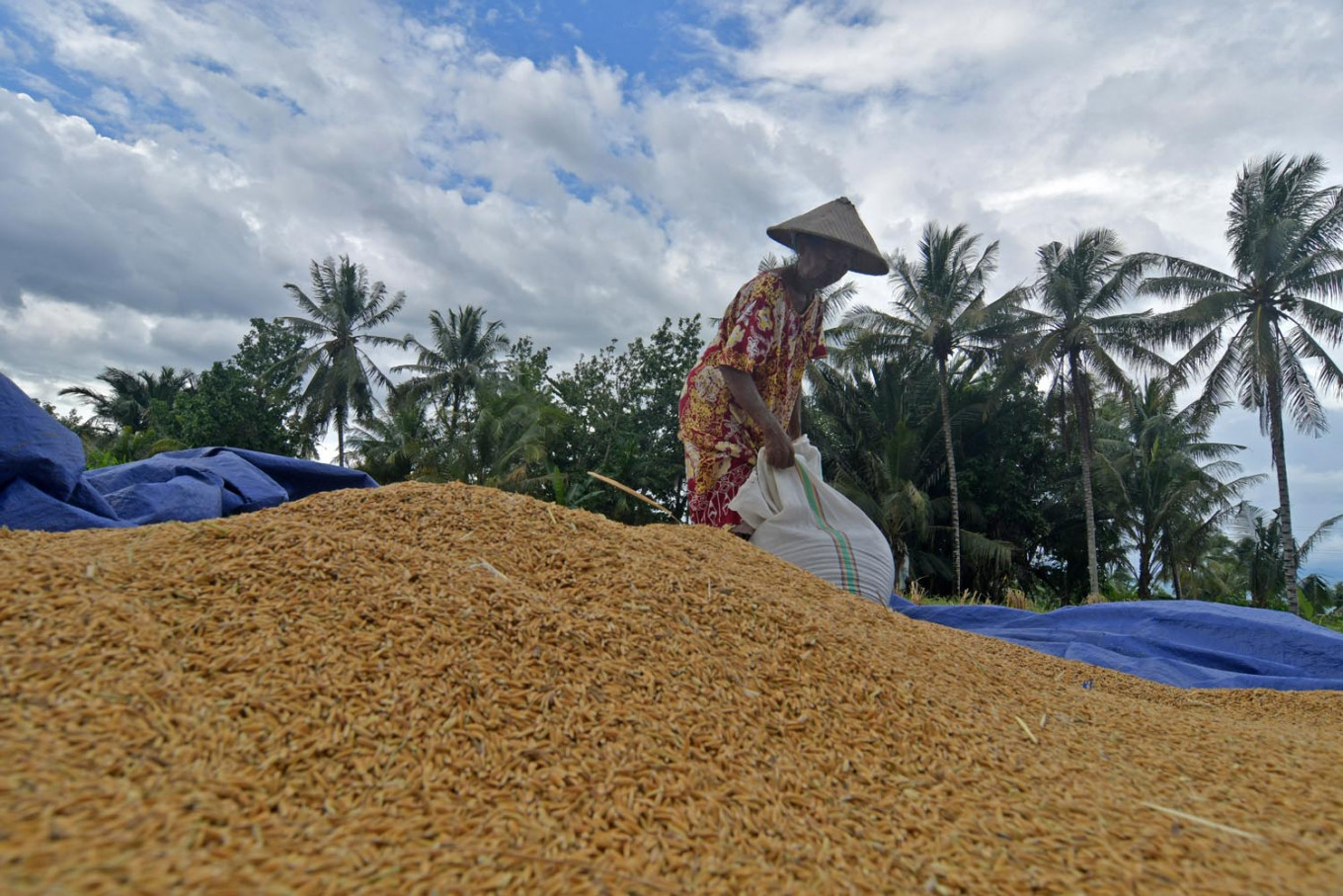 Agriculture Ministry asks for additional funds, seeks to help farmers' recovery