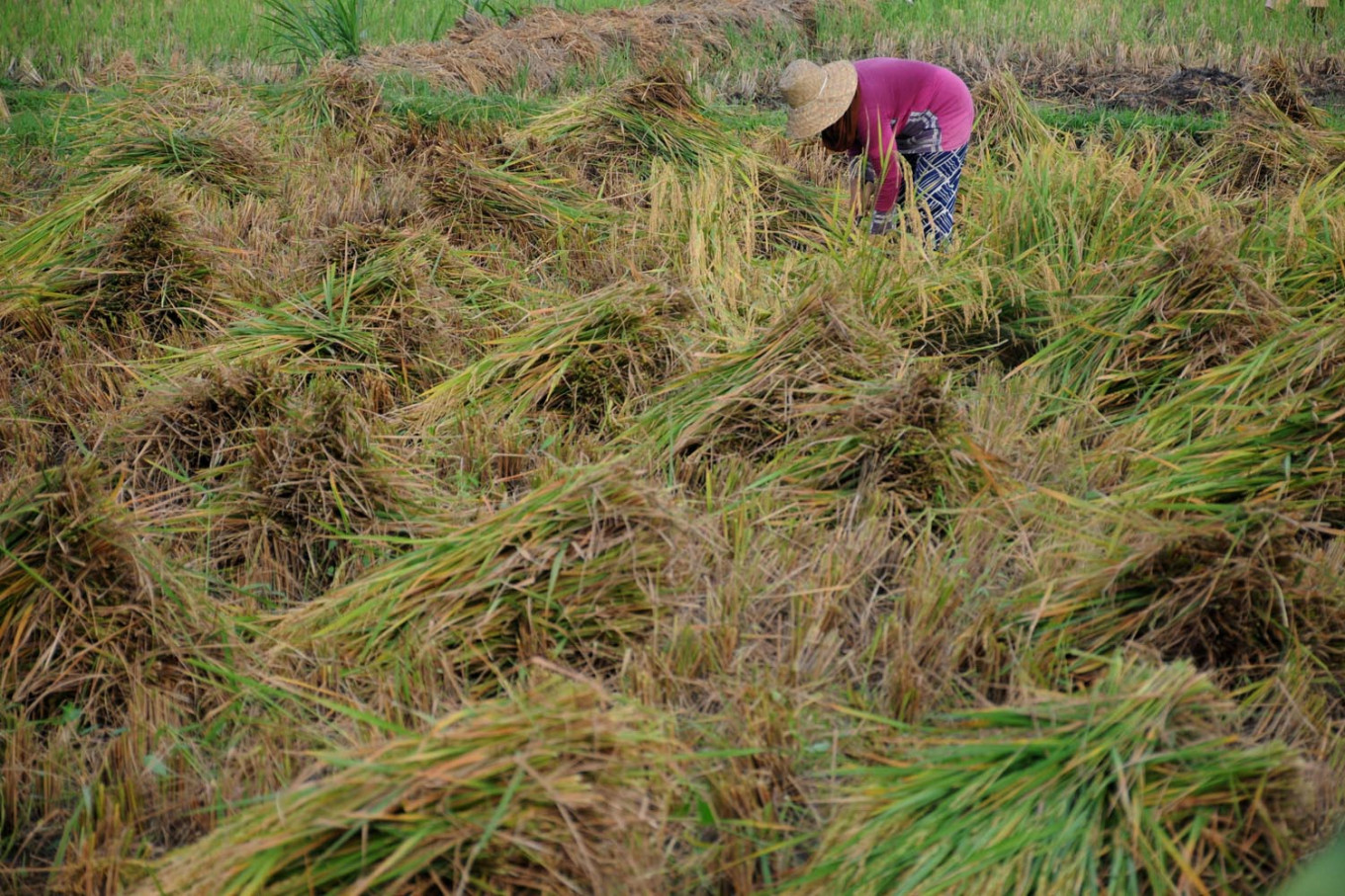 Farmers benefit from e-learning despite lackluster internet access
