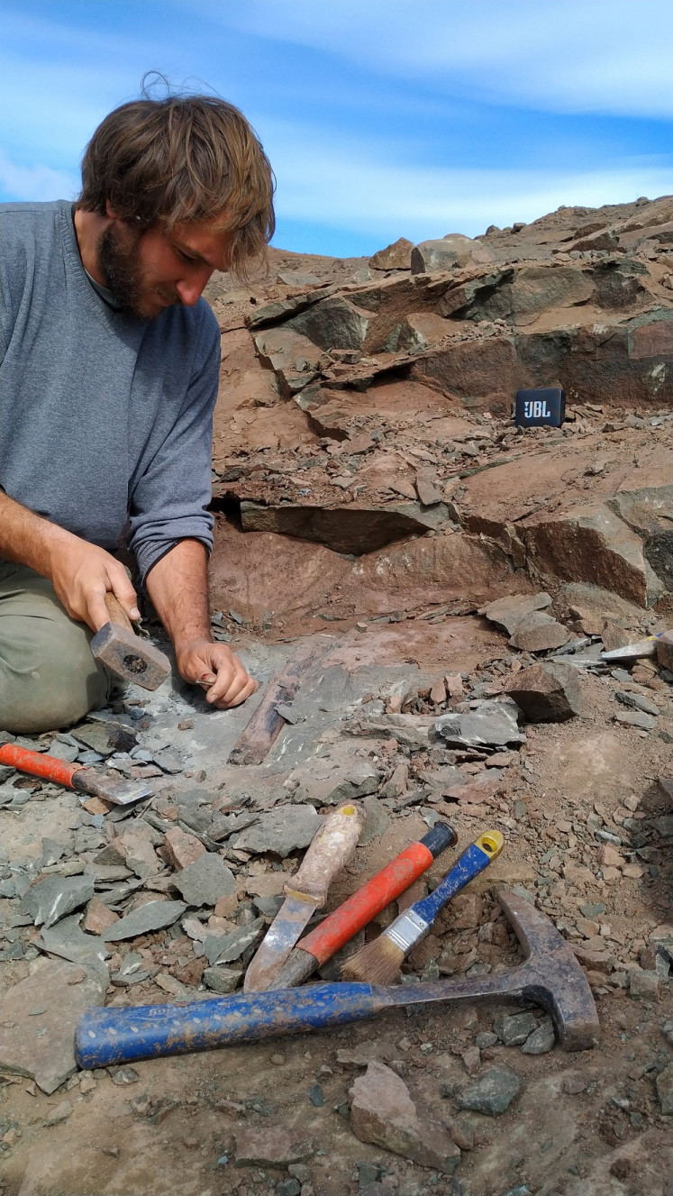 Federico Brisson, member of the Argentine Museum of Natural Sciences unearth fossils of a megaraptor, at El Calafate, Santa Cruz, Argentina, on March 15, 2020.