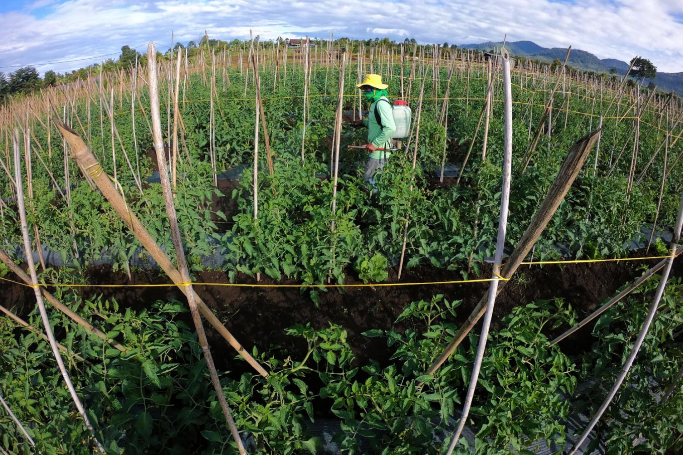 Intensive farming heightens pandemic risk: Study