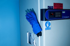A glove is placed on the handle of a laboratory refrigerator that keeps the swab samples. JP/Agung Parameswara